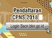 Info pendaftaran CPNS 2018 di sscn.bkn.go.id